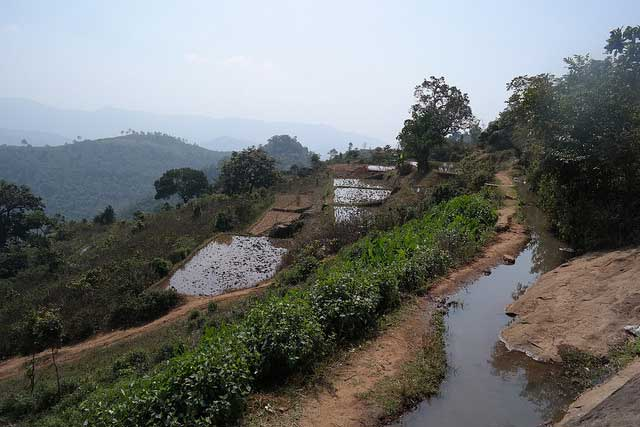 araku-valley3