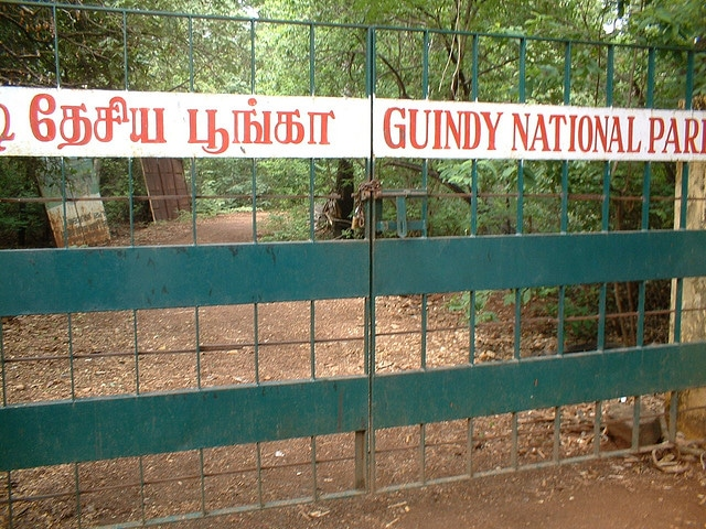 guindy-national-park