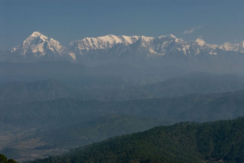 Kausani Tea Estate Kausani
