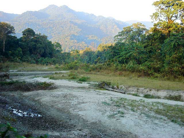 manas-national-park2