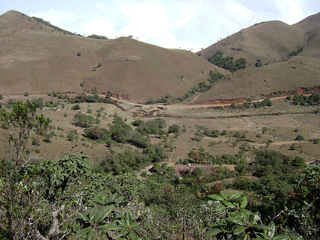 mukurthi-national-park