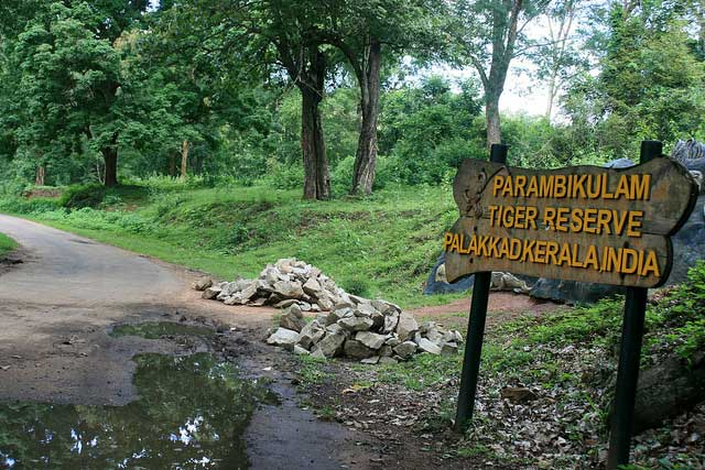 parambikulam-wildlife-sanctuary