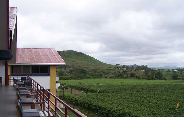 sula-vineyards