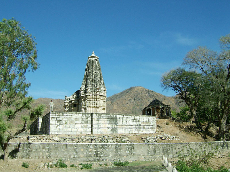 The Surya Narayan Temple