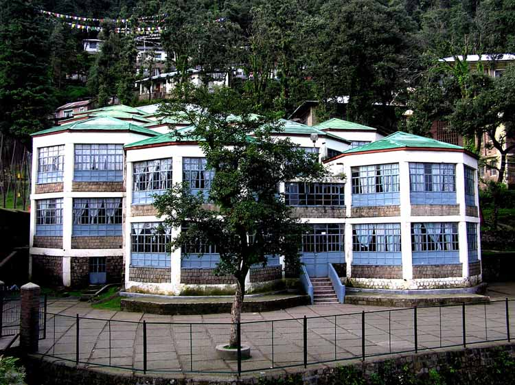 Tibetan Childrens Village