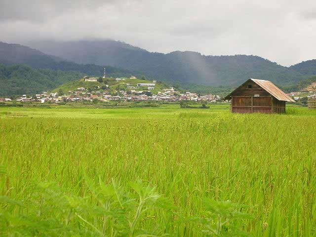 Top 12 Places To Visit In Ziro Valley