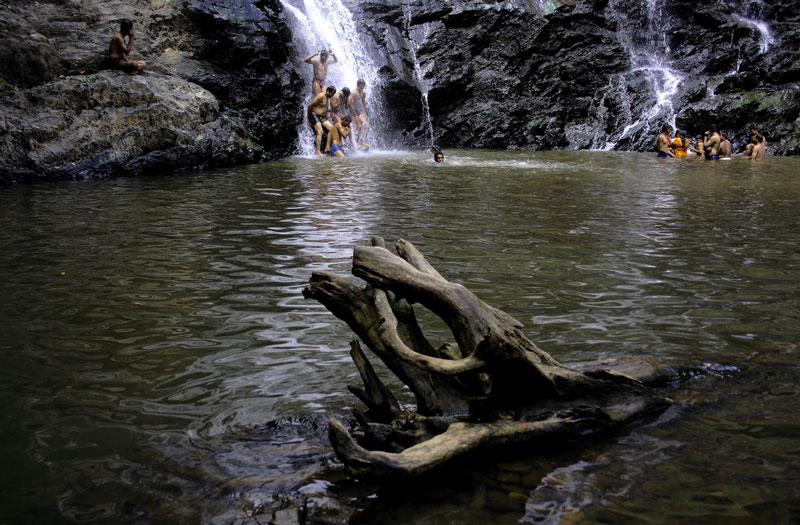 Abbey Falls, Coorg - Entry Fee, Visit Timings, Things To Do
