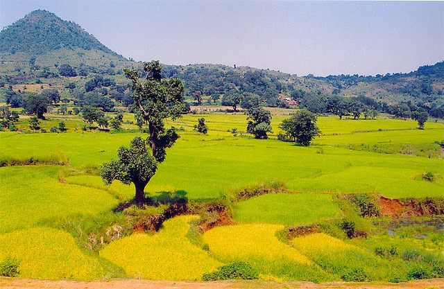 araku-valley2