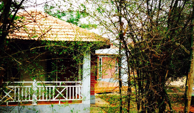 Top 10 resorts in bandipur trans india travels for Resorts in bandipur with swimming pool
