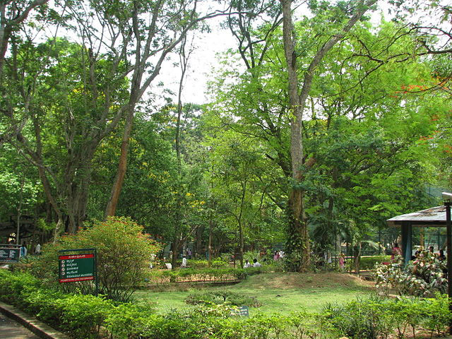 bannerghatta-national-park2