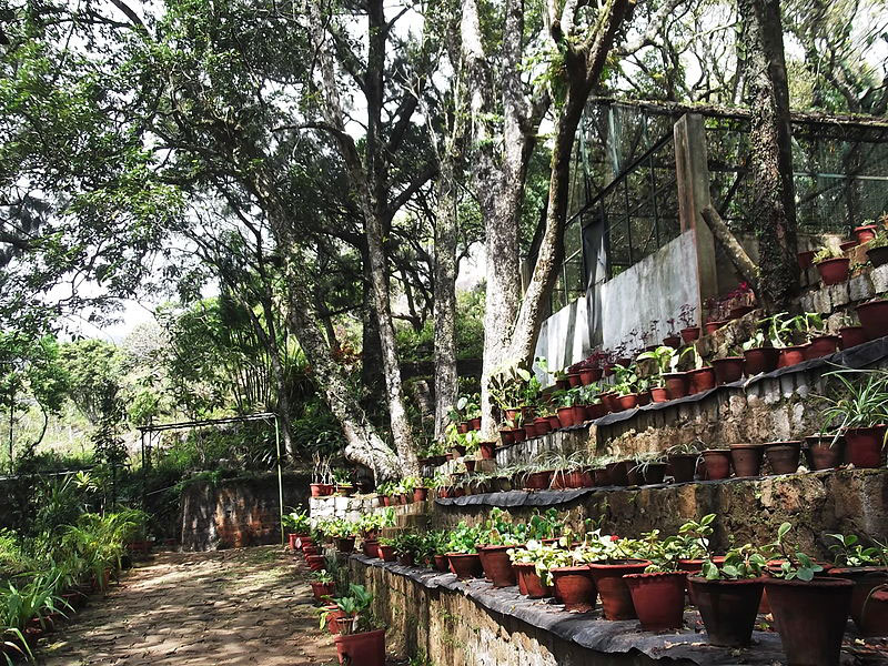 Botanical Garden Yercaud