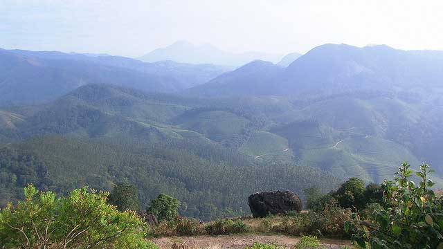 eravikulam-national-park