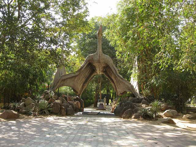 indroda-dinosaur-and-fossil-park