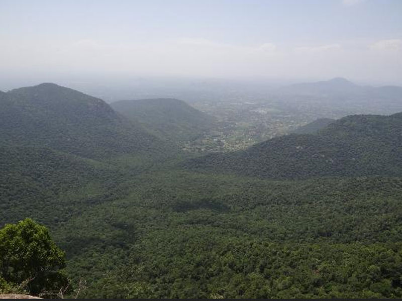 Karadiyur Viewpoint