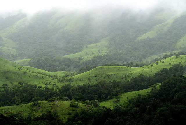 kudremukh-national-park3