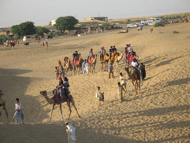 Pushkar Camel Safari Tour