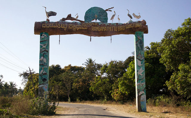 ranganathittu-bird-sanctuary