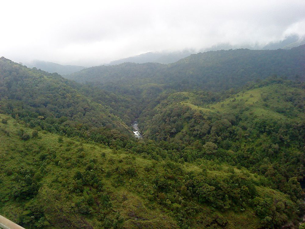 Silent Valley National Park, Palakkad