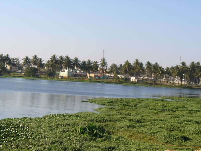 Varthur Lake